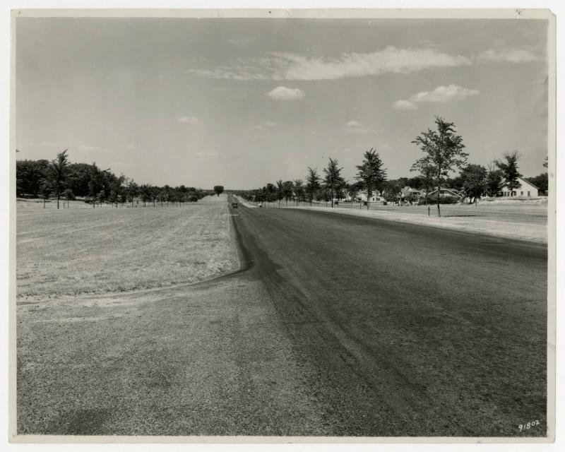 Walking View of Victory Memorial Drive